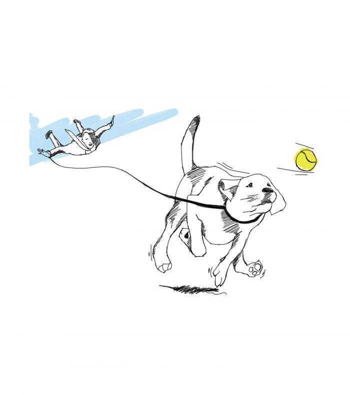 dog pack leader design sketch
