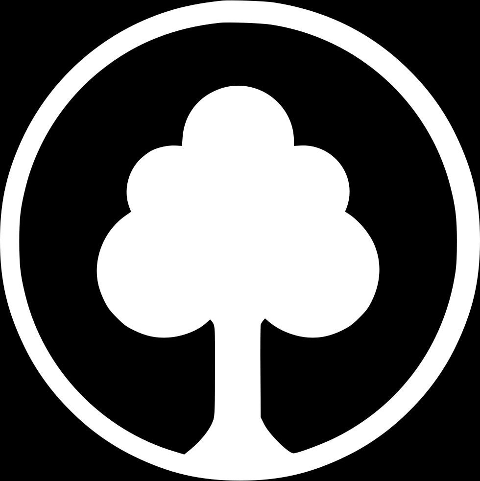pianta il tuo albero